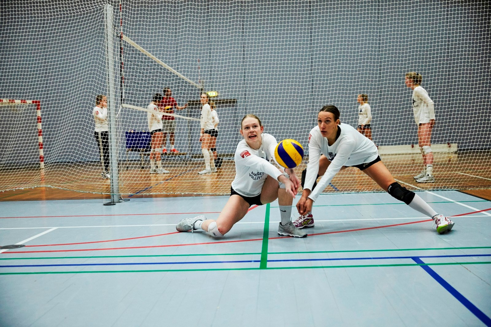 Amager Volleyball Klub